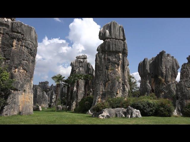 Каменный лес Шилинь, Куньмин, Китай в 4К Ultra HD