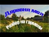 Видео разбор на гармони