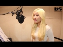 [k-pop] 타히티 - Singing Mouse Jerry Girl on Fire