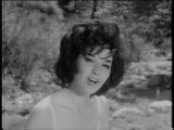 Patricia Carli - Le Roseau Et La Rivi