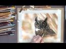 Учимся рисовать СУХОЙ пастелью поэтапно Рисунок совы от Ермоловой Юлии
