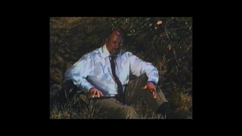 Palmbomen II John Lee Roche Official Video