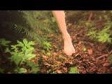 Alcest - Les Voyages De L'