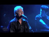 Icehouse - Don't Believe Anymore (Live in Sydney)  Moshcam