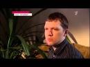 Новости на 1 первом канале, О криптовалюте !!!