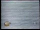 staroetv.su / Военное ревю (1-й канал Останкино, 1993) Российские проблемы безопасности границ; Сербско-хорватская война