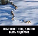 Сергей Корнилов фото #35