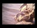 Камышин в хронике. Выпуск №119 Камышин, лето 1982 года, Волга, мост, островок