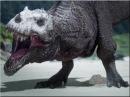 Самка динозавр заживо съела ухаживавшего самца