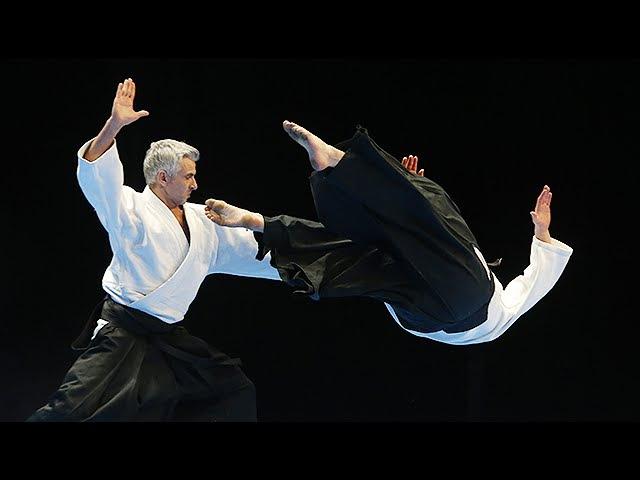 L'Aikido au 30e Festival des Arts Martiaux