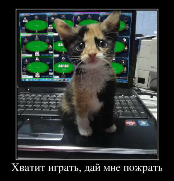 OpGv-tkk7qM.jpg