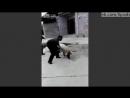Фермер убивает свинью с одного удара кувалдой по голове  Farmer uses big hammer to kill pig