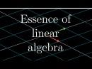 Essence of linear algebra preview