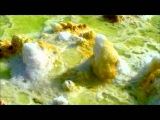 DALLOL, Danakil desert, Great Rift Valley, Ethiopia,