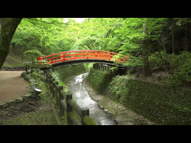 (4K)新緑の京都(2016/5/15)