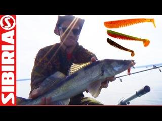 Ловля судака в августе на джиг с лодки на приманки своими руками 40