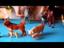 Домашние животные для детей На ферме. Кто как разговаривает