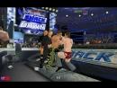 Дэниел Брайан (с Рэнди Ортоном) против Шона Майклза (с Triple H)