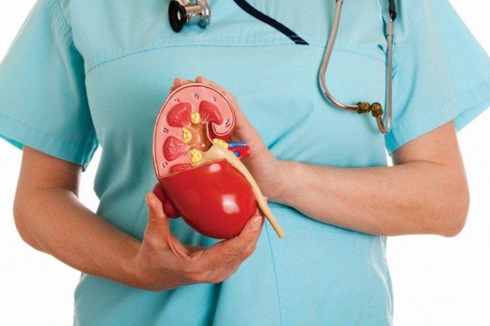 Заболевание почек - хронический пиелонефрит
