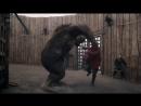 Beowulf Return to the Shieldlands / Беовульф Сезон 1 Серия 8 S01E08 (ENG)
