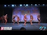 Bodybuilding 1st Callout - Prejudging - IFBB Chicago Pro 2016 (GoB)