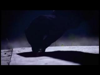 Академия Ведьм / Wits Academy - Season 2 - Трейлер online-multy.ru
