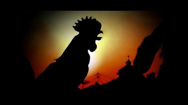 Sabda Nabi Ayam Ternyata Bisa Melihat Malaikat. Berita Islami Hari Ini