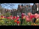 Нидерланды Гаага и парк цветов Кёкенхоф Непутевые заметки Выпуск от 06 03 2016