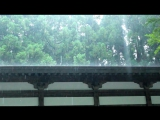 富山|立山博物館まんだら遊苑