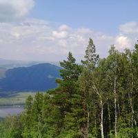 Светлана Янц