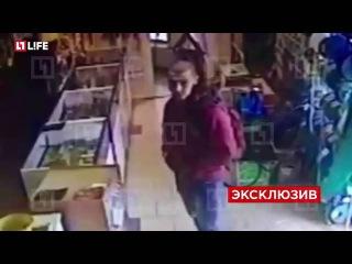 С топором на большую дорогу: напавшие на пост ДПС под Москвой попали под прицел камеры наблюдения