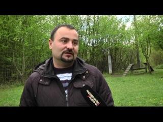 У Львові на шкільному стадіоні дві вівчарки загризли цуценя - «Надзвичайні новини»: оперативна кримінальна хроніка, ДТП, вбивства