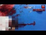 Убийство тренера по каратэ вСаратове: видео с места расстрела. Эксклюзив НТВ