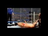 Undertaker vs Randy Orton Armageddon 2005 - Hell In a Cell Match. - Video Dailymotion