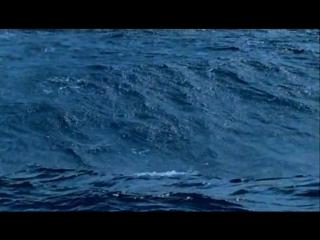 BBC Голубая планета/The Blue Planet (2001) Вступительные титры