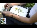 Мастер-класс 21 Как делать пятиминутные зарисовки с натуры акварелью. Скетч Подсолнух.