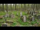 Страшные истории на ночь - Кладбище