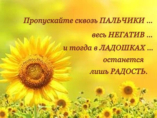 https://pp.vk.me/c630631/v630631200/192d0/DiEFc4-UsGM.jpg