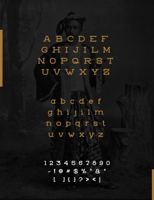 ZVIRO шрифт скачать бесплатно