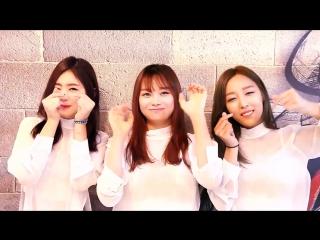 걸그룹 퍼펄즈, 컬투의 정찬우, 김태균씨의 무극천하 오픈 축하 영상!