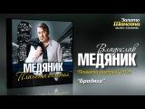 Владислав Медяник - Бродяга (Audio)
