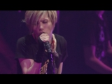 Acid Black Cherry - Black Cherry (TOUR 『2012』)