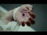 Scissor Sisters 'Invisible Light'