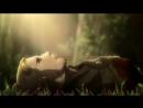 Грустный клип по аниме 'Атака Титанов'_HIGH