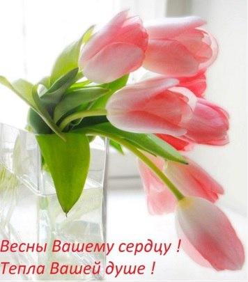 http://cs630717.vk.me/v630717829/1bd4b/9zj1ACHnPnw.jpg