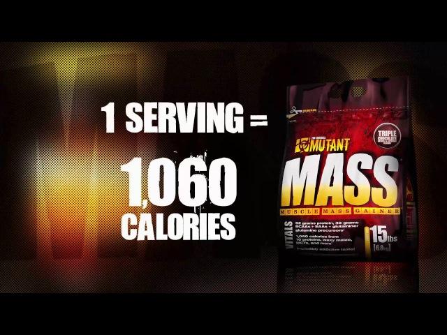 MUTANT Mass - Gainer, kultowa odżywka węglowodanowo-białkowa.