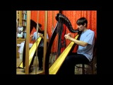Chanter's Tune (traditional) on Celtic Harp