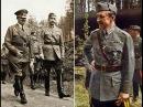 Загадки истории. Маршал Маннергейм спас ленинград от захвата его Гитлером