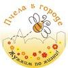 Пчела в городе