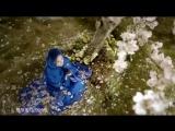 彭佳慧 Julia Peng feat. F.I.R 飛兒樂團《心之火 Xin Zhi Huo》電視劇《花千骨》片頭曲 Music Video